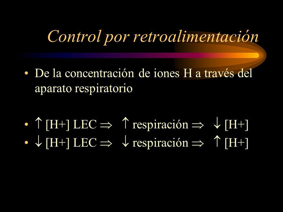 Ventilación alveolar [ H+] pH a 7.0 la vent. Alv. 4 a 5 veces pH + 7.4 la vent. Alv. –La compensación respiratoria al ascenso del pH no es tan eficaz