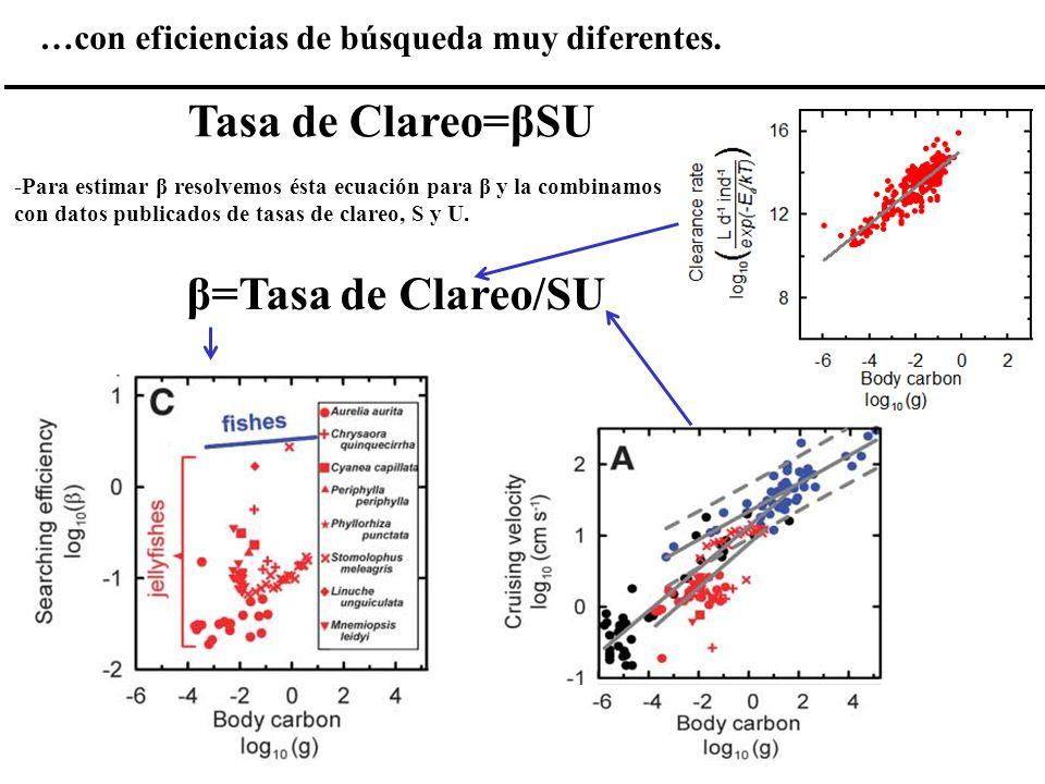 …con eficiencias de búsqueda muy diferentes. -Para estimar β resolvemos ésta ecuación para β y la combinamos con datos publicados de tasas de clareo,