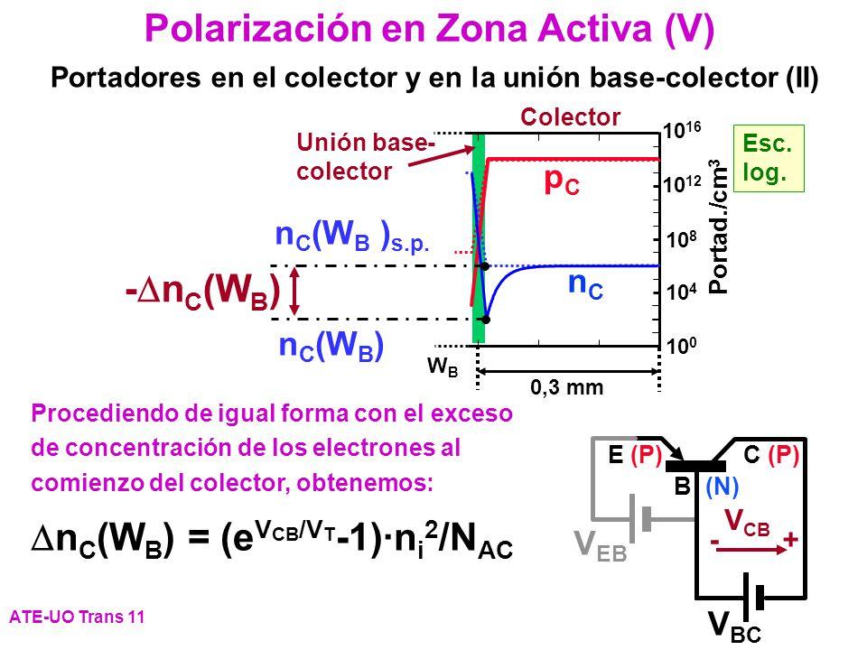 Procediendo de igual forma con el exceso de concentración de los electrones al comienzo del colector, obtenemos: n C (W B ) = (e V CB /V T -1)·n i 2 /