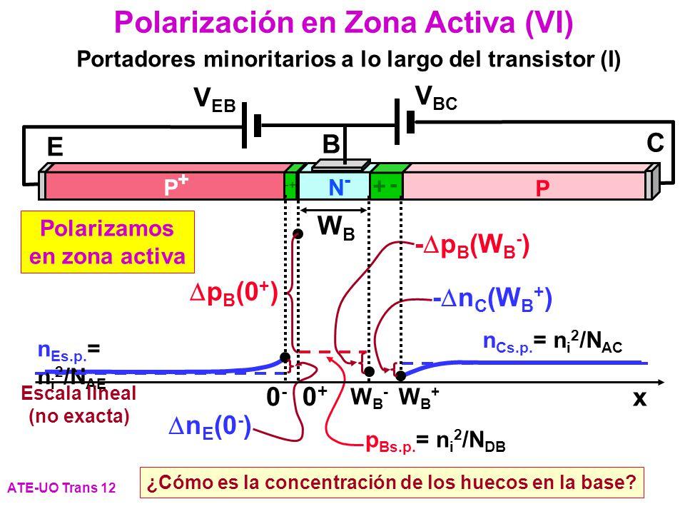 p Bs.p. = n i 2 /N DB n Es.p. = n i 2 /N AE n Cs.p. = n i 2 /N AC p B (0 + ) n E (0 - ) - p B (W B - ) - n C (W B + ) Polarización en Zona Activa (VI)