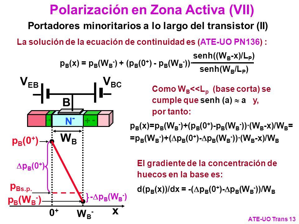 Polarización en Zona Activa (VII) ATE-UO Trans 13 Portadores minoritarios a lo largo del transistor (II) p Bs.p. p B (W B - ) p B (0 + ) 0+0+ WB-WB- x