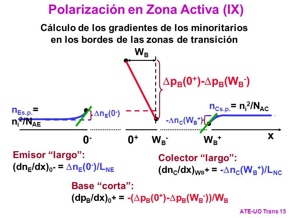 Polarización en Zona Activa (IX) ATE-UO Trans 15 Cálculo de los gradientes de los minoritarios en los bordes de las zonas de transición - n C (W B + )