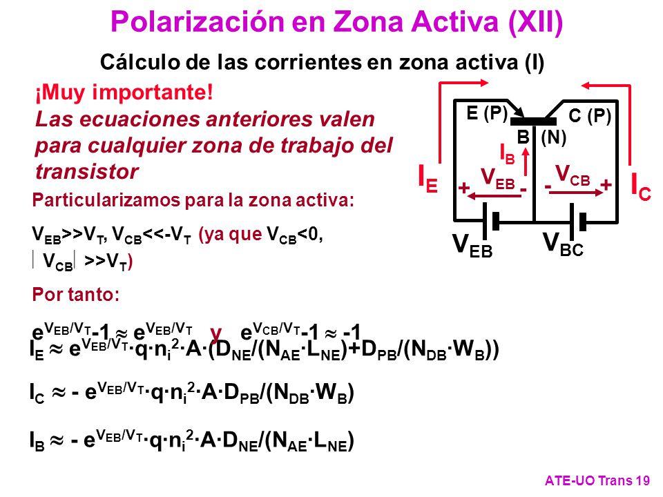Polarización en Zona Activa (XII) ATE-UO Trans 19 Cálculo de las corrientes en zona activa (I) I E e V EB /V T ·q·n i 2 ·A·(D NE /(N AE ·L NE )+D PB /