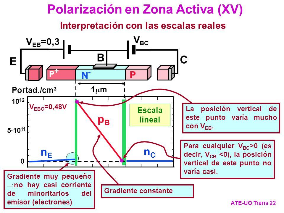 Gradiente muy pequeño no hay casi corriente de minoritarios del emisor (electrones) Escala lineal Portad./cm 3 5·10 11 10 12 0 pBpB nCnC nEnE 1 m V EB