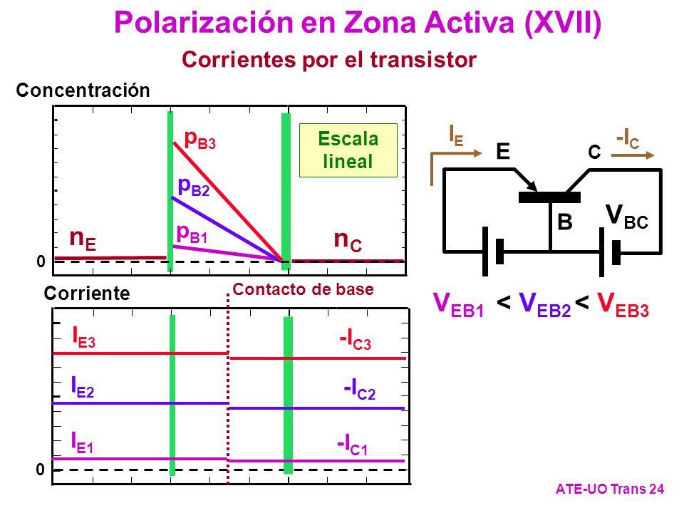 0 nCnC Concentración Escala lineal 0 Corriente Contacto de base nEnE C E B V BC IEIE -I C Polarización en Zona Activa (XVII) ATE-UO Trans 24 Corriente