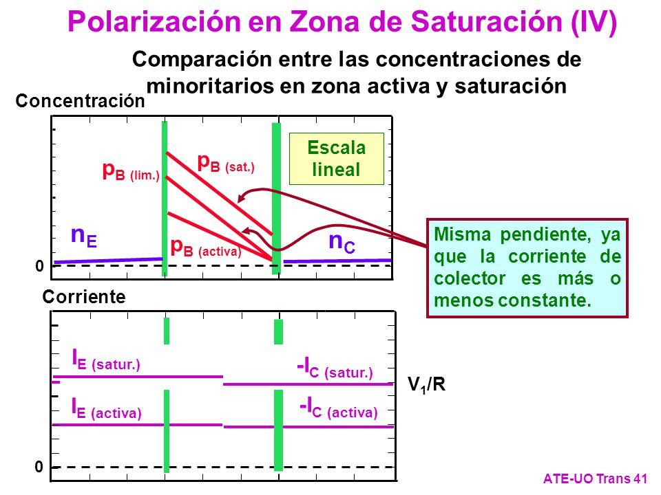 -I C (activa) I E (activa) p B (activa) 0 Concentración Escala lineal 0 Corriente nCnC nEnE Comparación entre las concentraciones de minoritarios en z