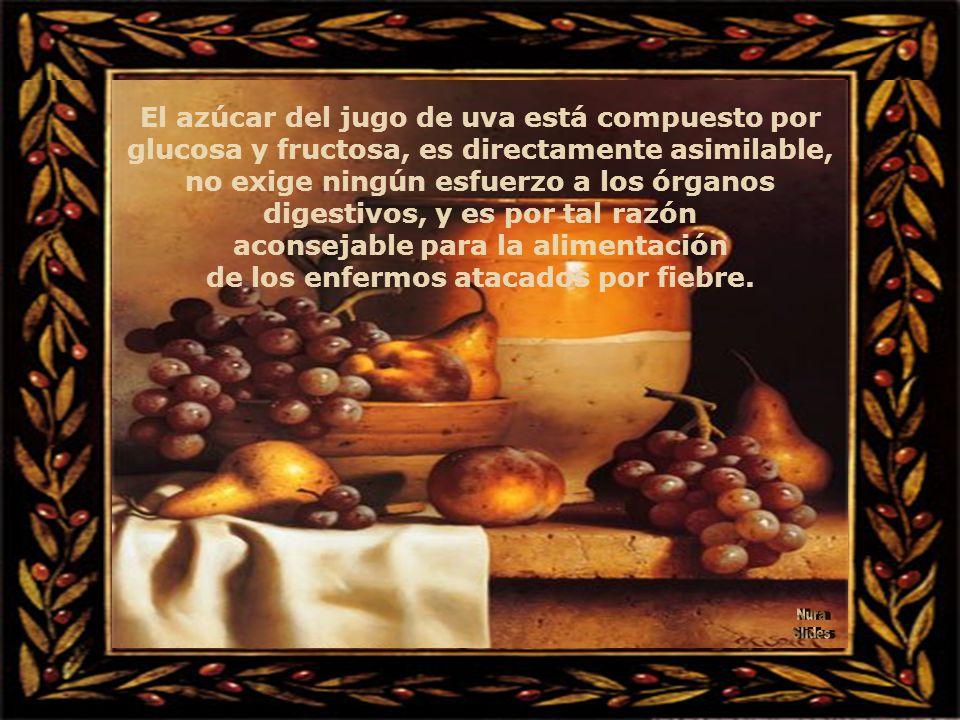 La tradición atribuye al jugo de uva las más elogiosas expresiones como: sangre vegetal, leche vegetal y seiva viva. El jugo de uva contiene más calor