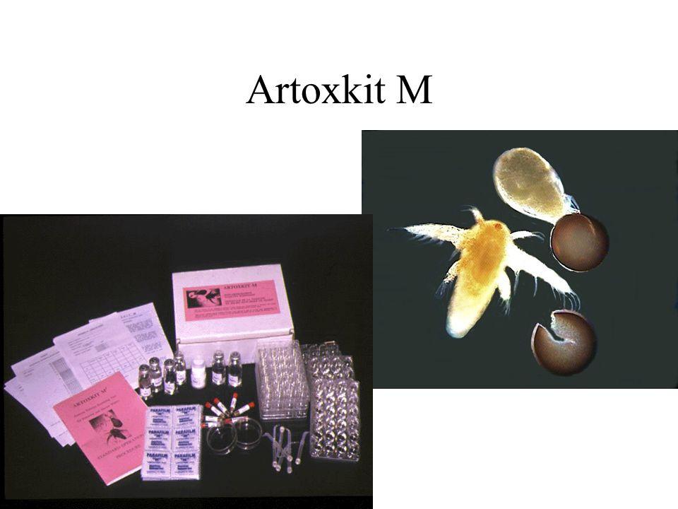 Metodología 5 extractos (etanólicos) vegetales con actividad anti-Artemia conocida: –Solanum americanum (hojas) –Ocimum micranthum (aceite) –Petiveria alliacea (raíz) –Gliciridia sepium (corteza) –Neurolaena lobata (hoja)