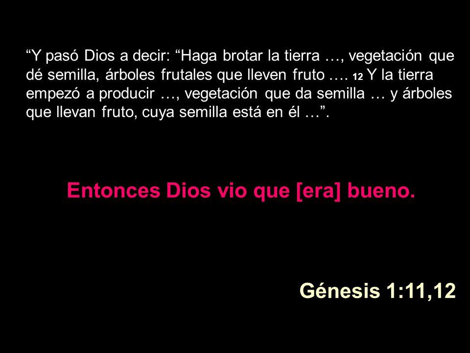 Y pasó Dios a decir: Haga brotar la tierra …, vegetación que dé semilla, árboles frutales que lleven fruto …. 12 Y la tierra empezó a producir …, vege