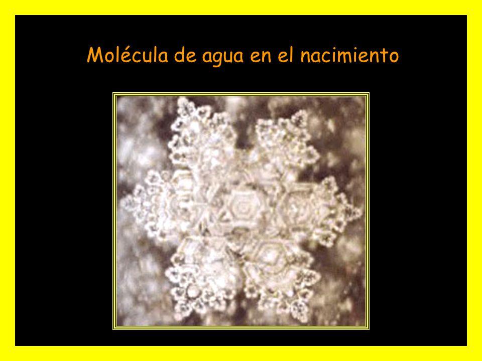 Masaru Emoto, científico japonés, demostró como el efecto de determinados sonidos, palabras, pensamientos, y sentimientos alteran la estructura molecu