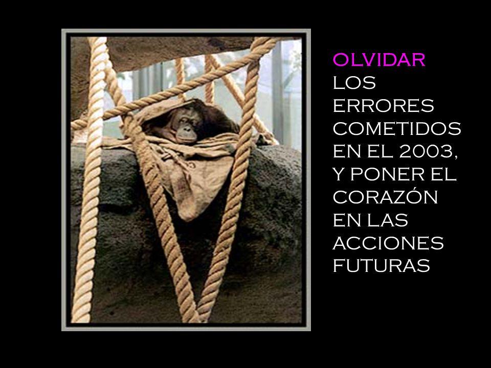 OLVIDAR LOS ERRORES COMETIDOS EN EL 2003, Y PONER EL CORAZÓN EN LAS ACCIONES FUTURAS