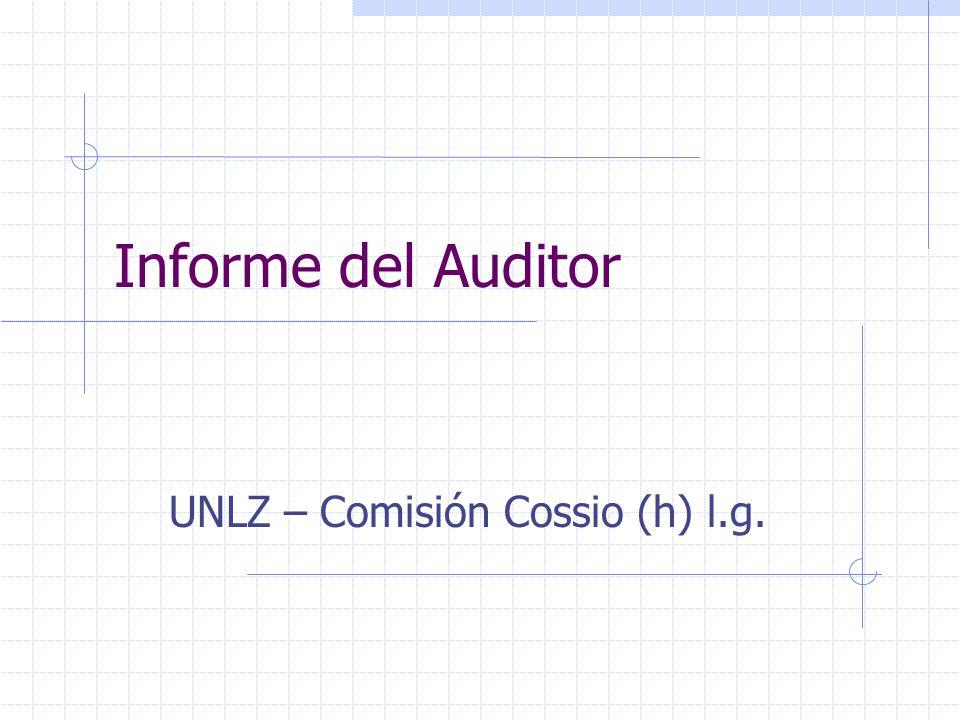 Informe del Auditor UNLZ – Comisión Cossio (h) l.g.