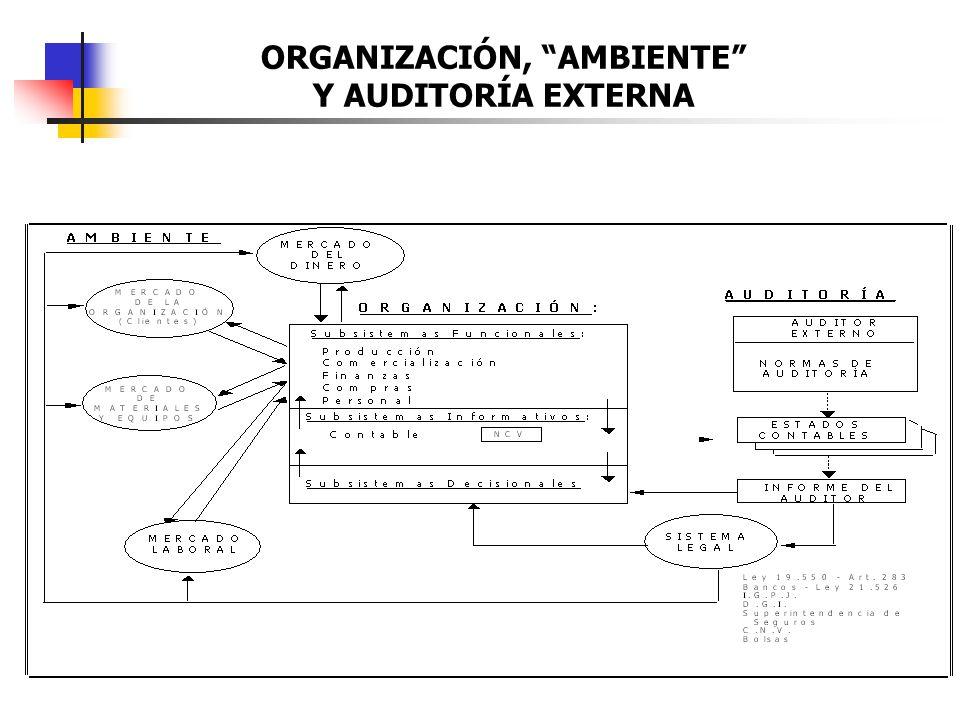 ORGANIZACIÓN, AMBIENTE Y AUDITORÍA EXTERNA