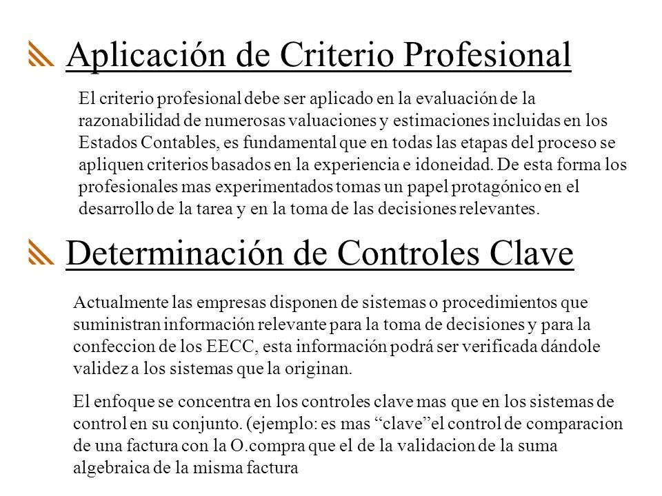 Aplicación de Criterio Profesional El criterio profesional debe ser aplicado en la evaluación de la razonabilidad de numerosas valuaciones y estimaciones incluidas en los Estados Contables, es fundamental que en todas las etapas del proceso se apliquen criterios basados en la experiencia e idoneidad.