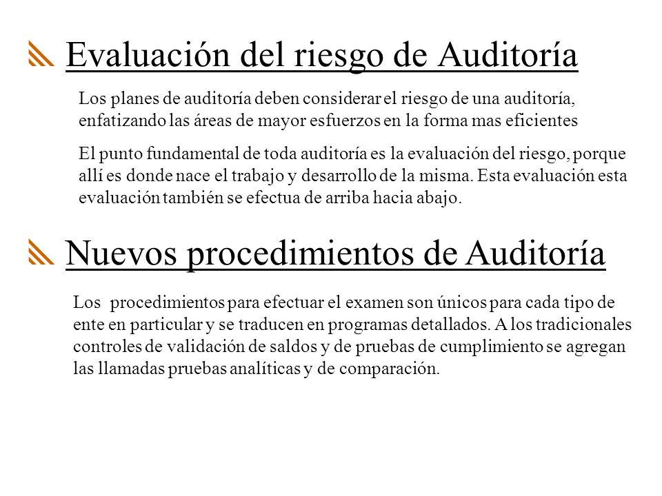Evaluación del riesgo de Auditoría Los planes de auditoría deben considerar el riesgo de una auditoría, enfatizando las áreas de mayor esfuerzos en la forma mas eficientes El punto fundamental de toda auditoría es la evaluación del riesgo, porque allí es donde nace el trabajo y desarrollo de la misma.