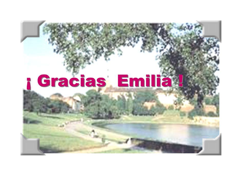 ¡ Gracias Emilia !