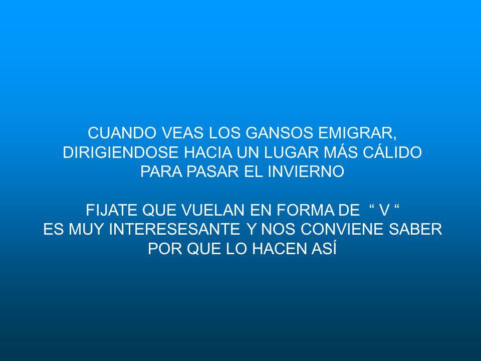 LECCIÓN 3: COMPARTIR EL LIDERAZGO RESPETARNOS MUTUAMENTE EN TODO MOMENTO COMPARTIR LOS PROBLEMAS Y LOS TRABAJOS MÁS DIFICILES REUNIR HABILIDADES Y CAPACIDADES, COMBINAR DONES, TALENTOS Y RECURSOS