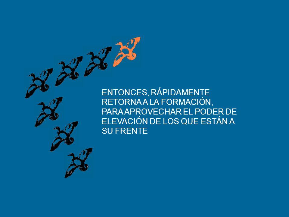 SIENTE LA RESISTENCIA DEL AIRE Y LA DIFICULTAD DE VOLAR SOLO