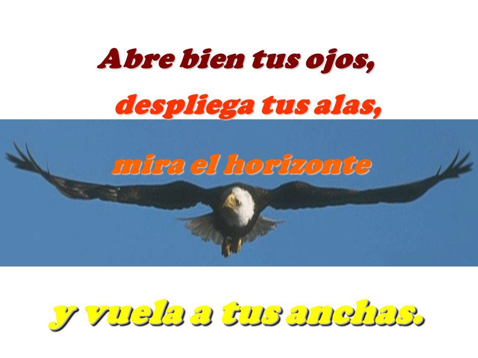 Abre bien tus ojos, despliega tus alas, mira el horizonte y vuela a tus anchas.