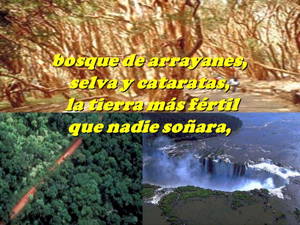 bosque de arrayanes, selva y cataratas, la tierra más fértil que nadie soñara, bosque de arrayanes, selva y cataratas, la tierra más fértil que nadie