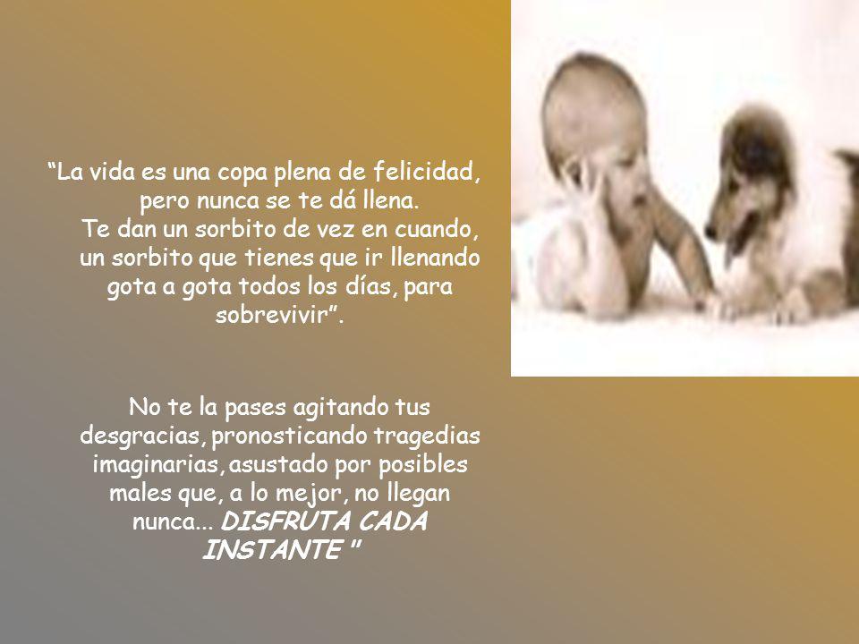 Nacemos para luchar por la felicidad...