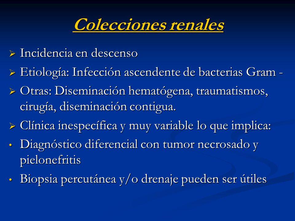 Colecciones renales Incidencia en descenso Incidencia en descenso Etiología: Infección ascendente de bacterias Gram - Etiología: Infección ascendente