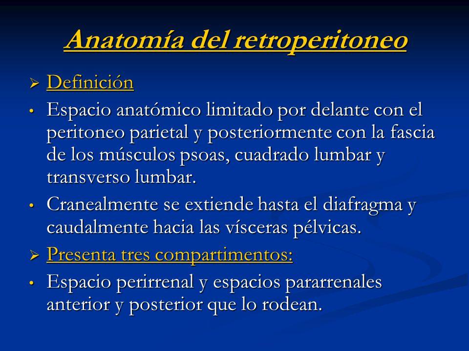 Anatomía del retroperitoneo Definición Definición Espacio anatómico limitado por delante con el peritoneo parietal y posteriormente con la fascia de l