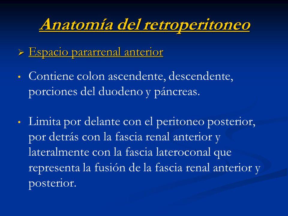 Anatomía del retroperitoneo Espacio pararrenal anterior Espacio pararrenal anterior Contiene colon ascendente, descendente, porciones del duodeno y pá