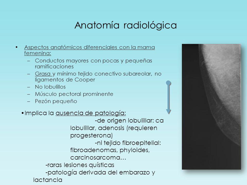 Anatomía radiológica Aspectos anatómicos diferenciales con la mama femenina: –Conductos mayores con pocas y pequeñas ramificaciones –Grasa y mínimo tejido conectivo subareolar, no ligamentos de Cooper –No lobulillos –Músculo pectoral prominente –Pezón pequeño Implica la ausencia de patología: -de origen lobulillar: ca lobulillar, adenosis (requieren progesterona) -ni tejido fibroepitelial: fibroadenomas, phyloides, carcinosarcoma… -raras lesiones quísticas -patología derivada del embarazo y lactancia