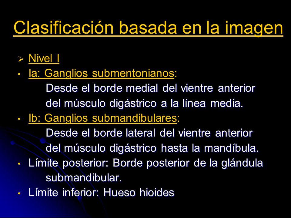 Clasificación basada en la imagen Nivel II Desde la base del cráneo hasta el hioides Desde la base del cráneo hasta el hioides IIa: Anteriores a yugular interna IIa: Anteriores a yugular interna IIb: Posteriores a la vena yugular interna IIb: Posteriores a la vena yugular interna Límite anterior: Glándula submandibular Límite anterior: Glándula submandibular Límite posterior: Borde posterior ECM Límite posterior: Borde posterior ECM