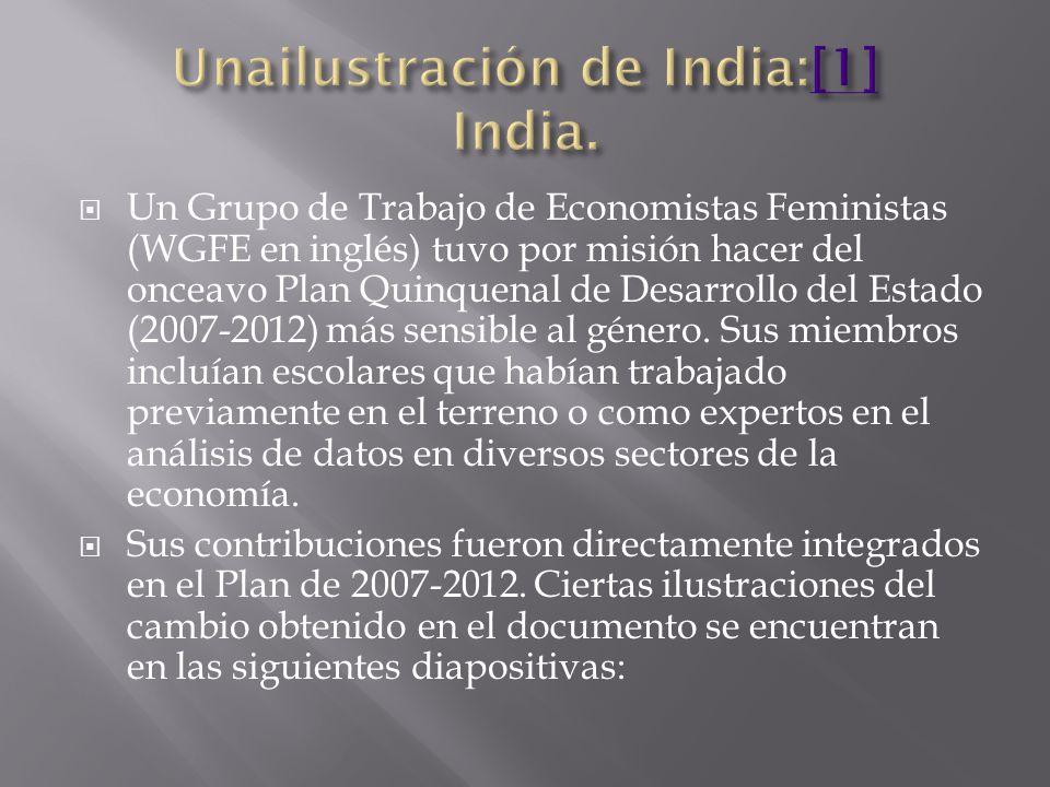 Un Grupo de Trabajo de Economistas Feministas (WGFE en inglés) tuvo por misión hacer del onceavo Plan Quinquenal de Desarrollo del Estado (2007-2012) más sensible al género.