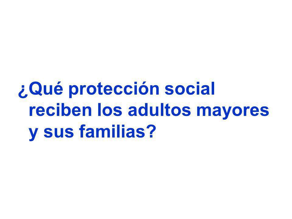 ¿Qué protección social reciben los adultos mayores y sus familias?