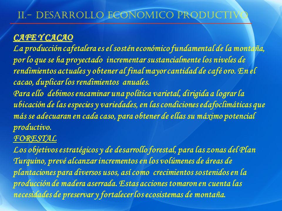 II.- DESARROLLO ECONOMICO PRODUCTIVO CAFE Y CACAO La producción cafetalera es el sostén económico fundamental de la montaña, por lo que se ha proyectado incrementar sustancialmente los niveles de rendimientos actuales y obtener al final mayor cantidad de café oro.