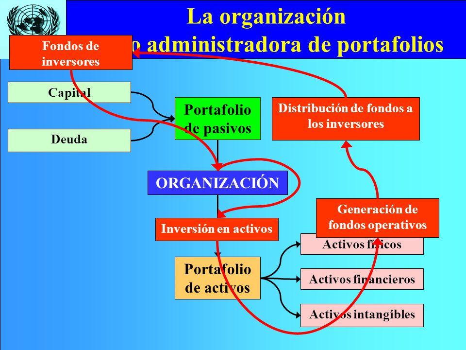 CEPAL/ILPES La organización como administradora de portafolios ORGANIZACIÓN Portafolio de activos Portafolio de pasivos Activos intangibles Activos fi