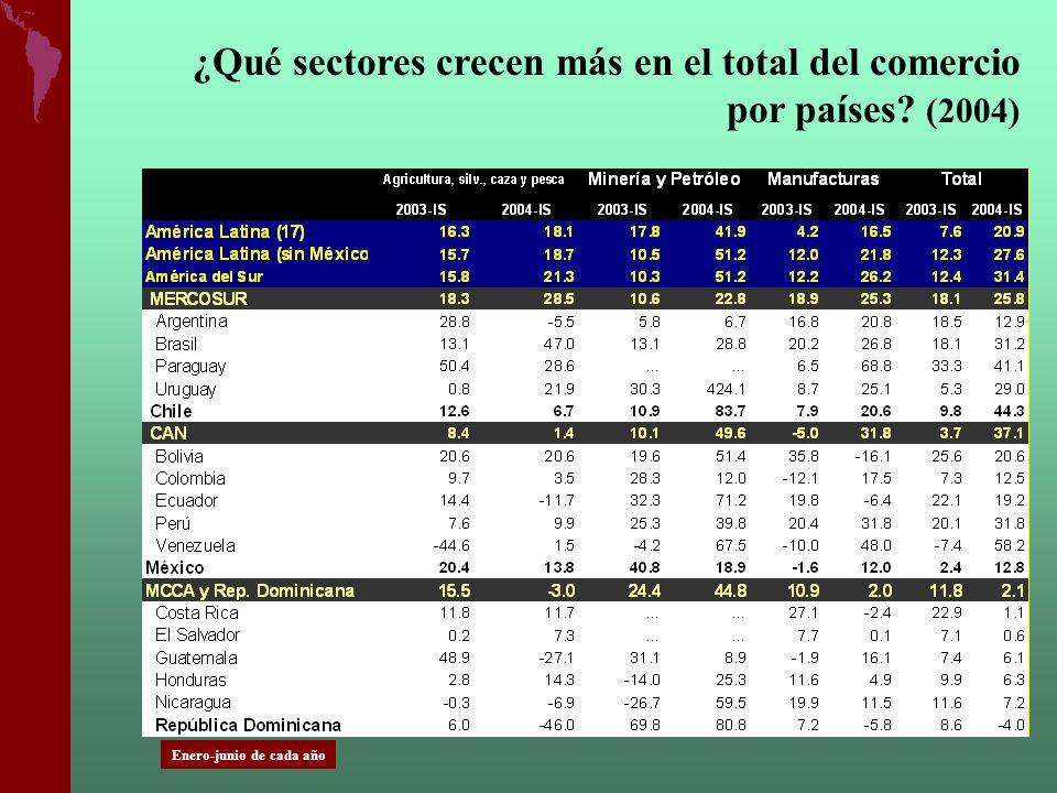 ¿Qué sectores crecen más en el total del comercio por países? (2004) Enero-junio de cada año
