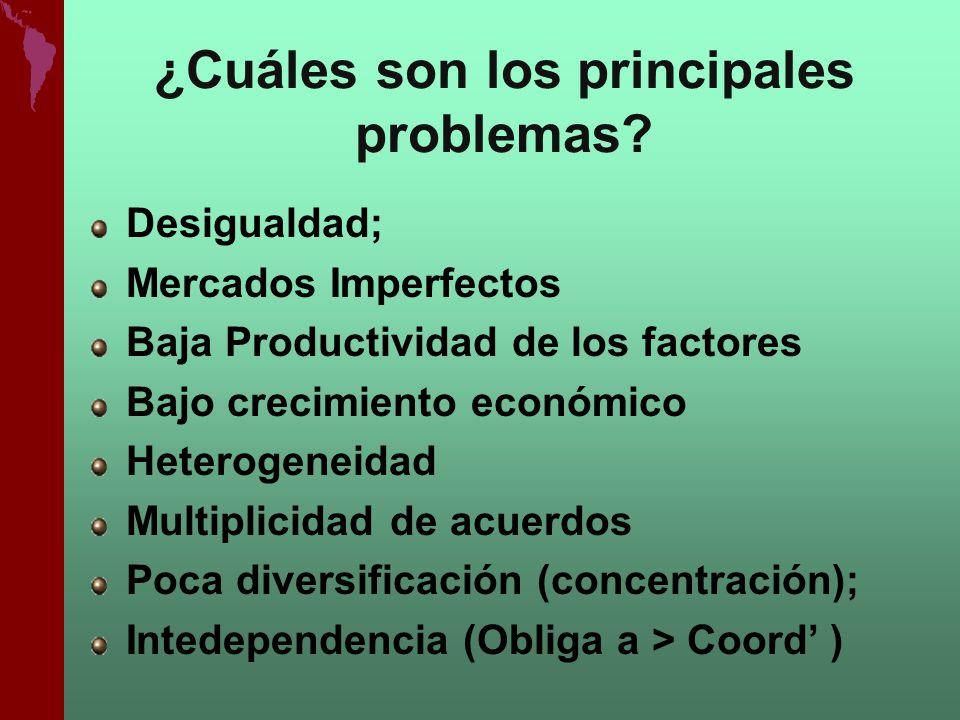 ¿Cuáles son los principales problemas? Desigualdad; Mercados Imperfectos Baja Productividad de los factores Bajo crecimiento económico Heterogeneidad