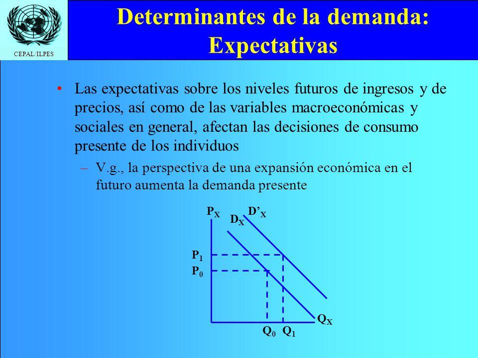 CEPAL/ILPES Determinantes de la demanda: Expectativas Las expectativas sobre los niveles futuros de ingresos y de precios, así como de las variables m
