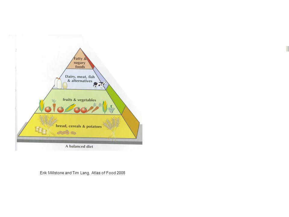 Erik Millstone and Tim Lang, Atlas of Food 2008