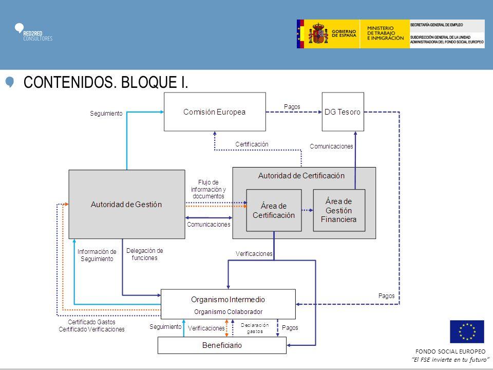 FONDO SOCIAL EUROPEO El FSE invierte en tu futuro CONTENIDOS. BLOQUE I.