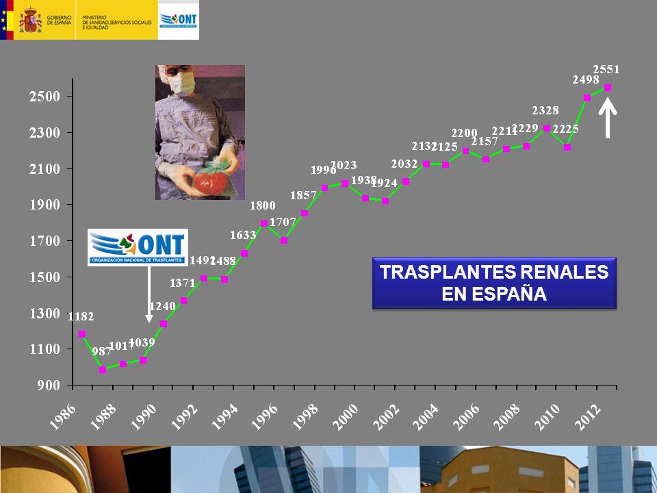 TRASPLANTES RENALES EN ESPAÑA TRASPLANTES RENALES EN ESPAÑA