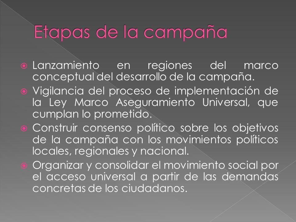 Lanzamiento en regiones del marco conceptual del desarrollo de la campaña.