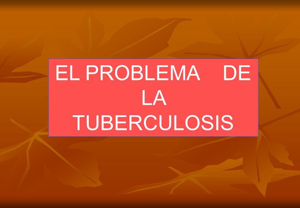 EL PROBLEMA DE LA TUBERCULOSIS