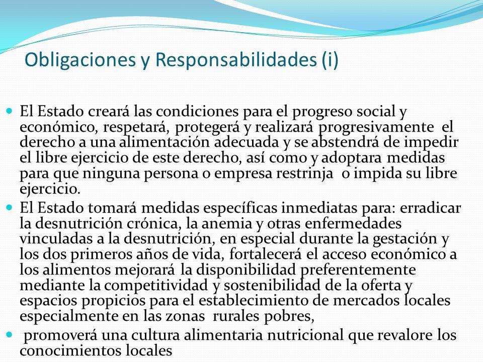 Obligaciones y Responsabilidades (i) El Estado creará las condiciones para el progreso social y económico, respetará, protegerá y realizará progresiva