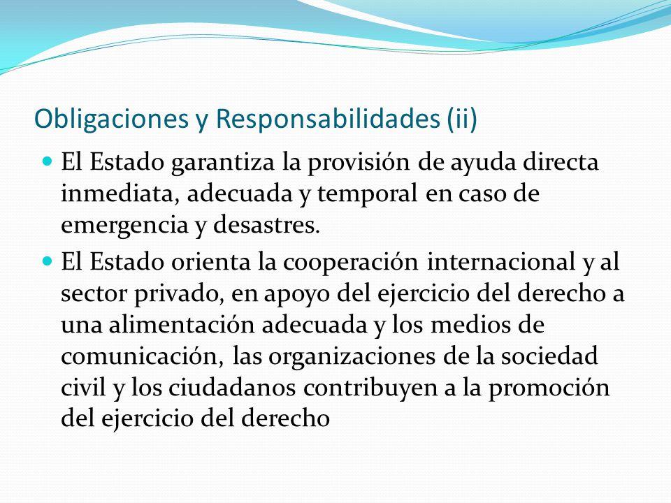 Obligaciones y Responsabilidades (ii) El Estado garantiza la provisión de ayuda directa inmediata, adecuada y temporal en caso de emergencia y desastr