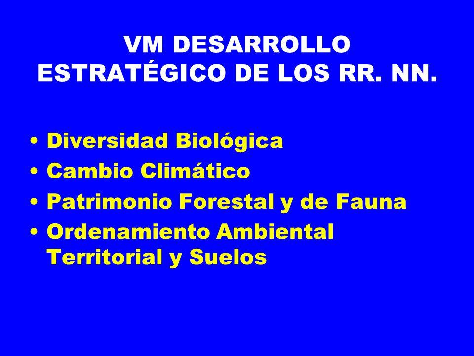 VM DESARROLLO ESTRATÉGICO DE LOS RR.NN.
