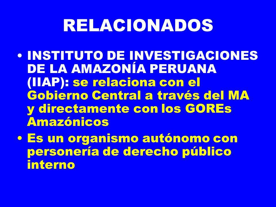 RELACIONADOS INSTITUTO DE INVESTIGACIONES DE LA AMAZONÍA PERUANA (IIAP): se relaciona con el Gobierno Central a través del MA y directamente con los GOREs Amazónicos Es un organismo autónomo con personería de derecho público interno