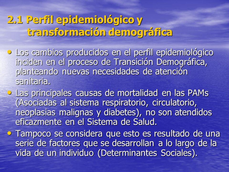 2.1 Perfil epidemiológico y transformación demográfica Los cambios producidos en el perfil epidemiológico inciden en el proceso de Transición Demográfica, planteando nuevas necesidades de atención sanitaria.