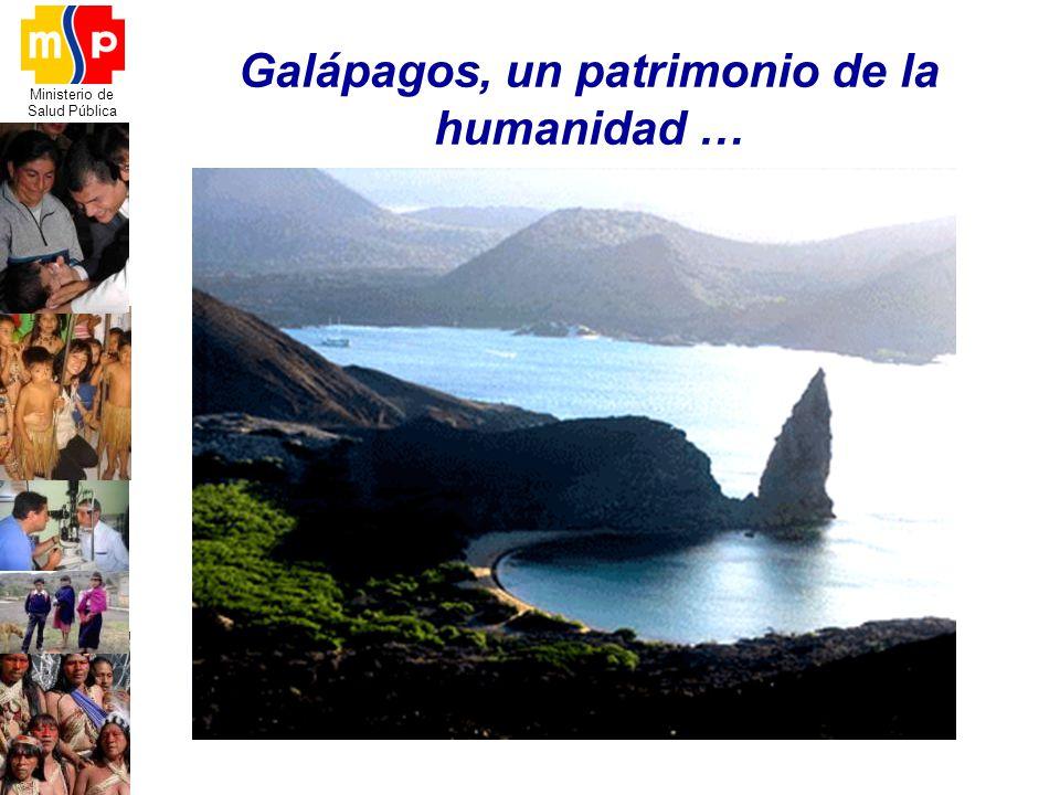 Ministerio de Salud Pública Galápagos, un patrimonio de la humanidad …