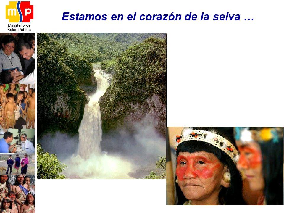 Ministerio de Salud Pública Estamos en el corazón de la selva …