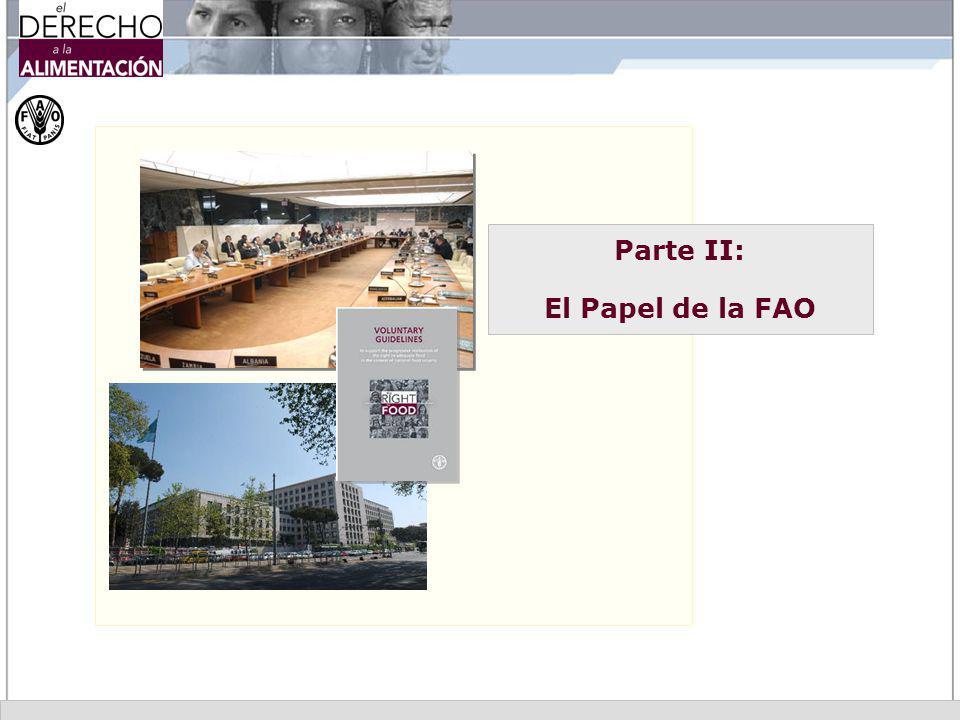 Parte II: El Papel de la FAO